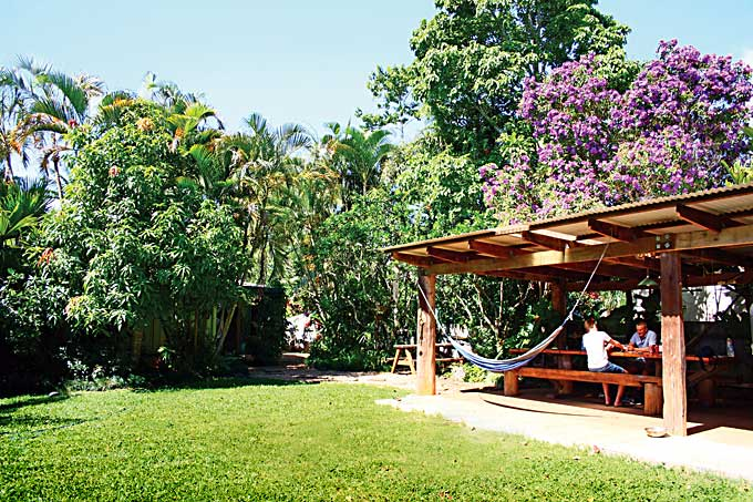 OTW lodge yard - Yungaburra Accommodation