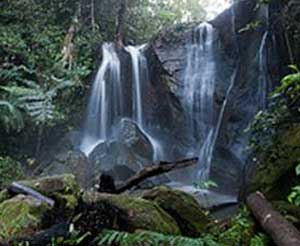 Vission Falls, near Yungaburra