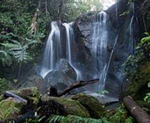 Vission Falls, near Yungaburra
